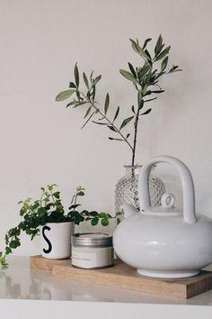 Küchen Update#solebich #einrichtung #interior #küche #kitchen #dekoration #decoration #olivenzweig #olive Foto: Königskram Fig Tree, Olive Tree, Fresh Green, Hygge, Succulents, Flowers, Plants, Room, Diy