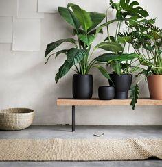 Mooie combinatie: grijsgroen met hout/kurk en zwart (gang?)