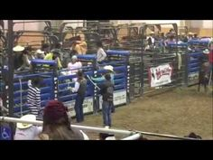 T-Rex cowboy rides a horse in strange video from Halloween rodeo