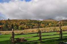 34 things to do in Stowe, VT
