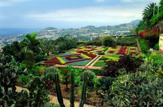 1 Woche Madeira mit Flügen und Hotel für 433 Euro - TRAVELBOOK.de