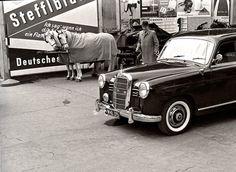 """Überschaubare Kundschaft und ein gemeinsamer Standplatz für Fiaker und Taxis beim Stephansdom im Jahr 1958. Kriegsschäden an der Rückseite des """"Steffl"""" wurden damals noch von Plakatwänden verdeckt (© Helmut J. Pillwein Privatarchiv)"""