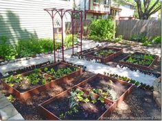 back shade vegetable garden freshly planted