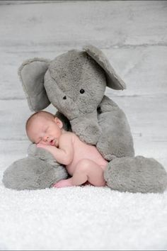 Stuffed Animal Elephant Baby Sleeping Back Cushion Baby Comfort Toy Doll - Newborn Photography / Newborn Photoshoot / Baby Photos Newborn Baby Photos, Baby Poses, Baby Boy Photos, Newborn Shoot, Boy Pictures, Baby Boy Newborn, Baby Baby, Newborn Pictures Diy, Pic Baby