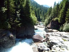 Widgeon Falls - Pitt Meadows - 6km (5 hours) - EG: minimal (+ canoeing)