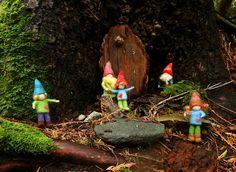 Fiona Duthie: Love Gnomes... needle felting