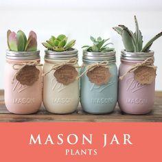 メイソンジャー 多肉植物 サボテン Ball Mason jar メイソンジャー レギュラーマウス 16oz メイソンジャープランツ 植物 ギフト 4個セット