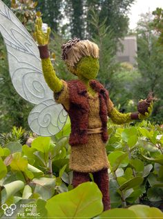 Focused on the Magic Flashback Friday ~ Pixie Hollow