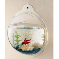 Add a clever touch to your wall décor with our Fish Bubble Wall Mount Fish Tank. The bowl can be filled with water or even flowers from the top of the bowl to match the décor for your living space. Please note that this bowl is not meant for fish larger than a betta, and please take extra consideration of the weight of the water when mounting.