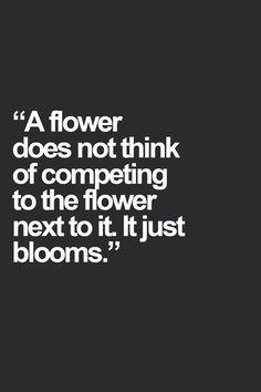 """""""Uma flor não pensa em competir com a outra flor ao seu lado. Ela simplesmente floresce.""""  Amém, e que possamos aprender a florir como elas."""