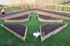 raised bed by sammsfamily