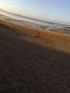 Gijon#en Movimiento#Playa San Lorenzo