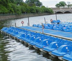 Paddle Boats Dates On A Budget, Paddle Boat, Places To Go, Seasons, Boating, Friends, Amigos, Ships, Seasons Of The Year