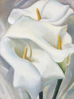 Georgia #OKeeffe • Calla Lilies, 1924
