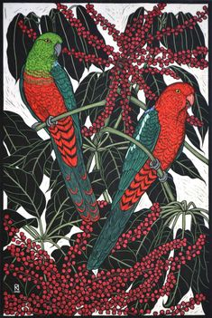 King Parrot, Hand coloured linocut on handmade Japanese paper by Rachel Newling 75 x 50 cm Australian Parrots, Australian Artists, Bird Illustration, Illustrations, Linocut Prints, Art Prints, Block Prints, Pet Birds, Birds 2
