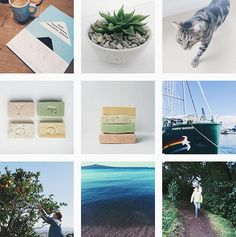 Connect Instagram With WordPress – Our Plugin Picks