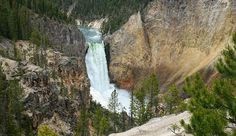 Lower Falls of the Grand Canyon of the Yellowstone. Photo by Gloria Wadzinski