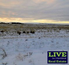 5 buildable acres right outside city limits, so you have an easy commute to town, but still get the country feel, plus peace and quiet! https://www.liveinmtrealestate.com/-/listing/300197071/Lot-24-Tri-View-Ln-Great-Falls-MT-59404?content_index=5150207&from=results&utm_content=buffer5b052&utm_medium=social&utm_source=pinterest.com&utm_campaign=buffer #liveinmt #realestate #lotforsale #greatfallsmt #centralmontana #centralmt #landforsale #buildahome