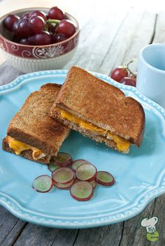Grilled Cheese and Chicken Sandwich Recipe  : Grilled cheese gets a whole new look and delicious new taste. Cheddar cheese is paired with chicken and sweet grapes for a healthy lunch that's high protein and delicious.
