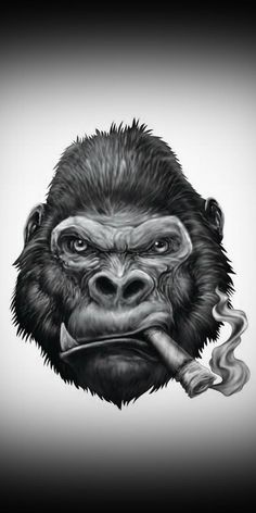 Search free monkey Ringtones and Wallpapers on Zedge and personalize your phone to suit you. Start your search now and free your phone Gorilla Tattoo, Animal Drawings, Art Drawings, Monkey Wallpaper, Gorilla Wallpaper, Cigar Art, Monkey Art, Dope Art, Wallpaper Pictures