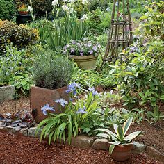 Container Height Variation    Tall accents such as bearded irises and a tuteur (upright support) bring a sense of scale and add dimension to a lush space near the garden's center.