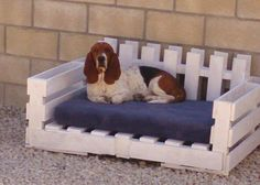 Pallets to make dog bed...this is something i wanna do for my cats