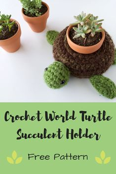 Create your own Succulent Holder with this DIY World Turtle! Free crochet pattern and beginner friendly to hold all your plant needs.