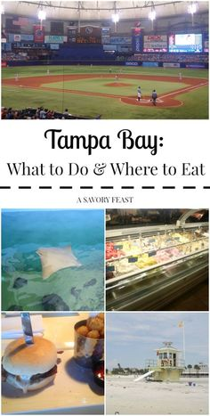 Tampa Bay: What to Do and Where to Eat Looking for a fun place to stay in Florida? There are so many things to do in the Tampa Bay Area. Whether you want to try new foods, do some shopping or enjoy the beach, this area has everything yo… Visit Florida, Old Florida, Tampa Florida, Florida Vacation, Florida Travel, Florida Beaches, Vacation Spots, Naples Florida, Kissimmee Florida