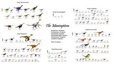 The Maniraptora: All maniraptoran dinosaurs discovered to date, 173 genera in 6 families.