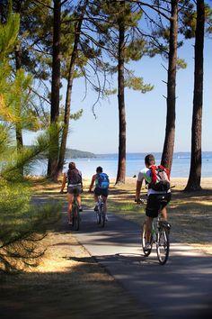 Vélo sur la piste cyclable qui longe le lac nord de Biscarrosse