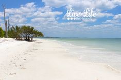 Beautiful beach in Southern Florida - just south of Sanibel Island and Fort Myers - Loves Key Sates Park