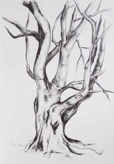 Original graphite drawing Tree drawing tree por BohemianInkStudios