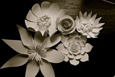Cette liste est pour un ensemble de 5 fleurs en papier en blanc ou ivoire avec jusquà 2 avec dentelle et perles. Lensemble inclut :    Aster : 24 cm de