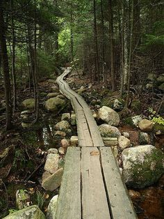 Acadia National Park - Maine- looks like trail around Jordan Pond