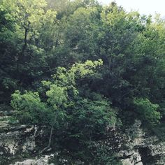 #nature#italy#prana