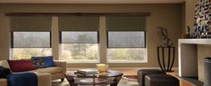 #AutomaticShades #RemoteShades #RollerShades #DualRollerShades  SHADING THAT AIDS CORPORATE PERFORMANCE - http://www.zebrablinds.com/blog/dual-roller-shading-aids-corporate-performance/