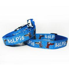 Obojek a vodítko Blackberry   Collar and leash by Blackberry #collar #leash #blue #dog #kelpie #blackberry #handmade #obojek #voditko #pes #rucni_vyroba #modra