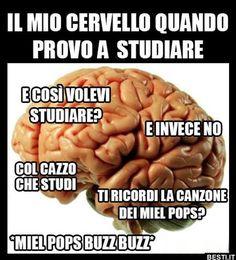 Il mio cervello Funny Video Memes, Funny Jokes, Funny Images, Funny Photos, Funny Instagram Memes, Serious Quotes, Magic Words, Derp, Funny Pins