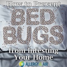 Bed bugs are unpleasant pests that plague many of our homes. With proper knowledge, you can protect yourself from a bed bug infestation. Bed Bugs Pictures, Moving In Together, Home Repair, Sprays, Allergies, Cleaning Hacks, Organizing, Household, Lifestyle