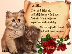 Mandala, Cats, Quotes, Blog, Movie Posters, Animals, Quotations, Gatos, Animales