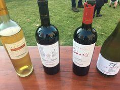 Vinhos degustados na Undurraga