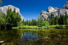 Yosemite National Park and Giant Sequoias Trip