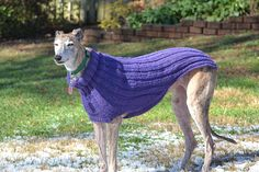 Free Knitting Pattern For Greyhound Jumper : Sweater knitting patterns, Italian greyhound and Knit jumpers on Pinterest