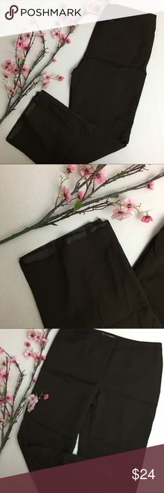 Ann Taylor Petite Lined Slacks Great work pants! Excellent condition. Very little wear. These pants are lined. Orig. price $109. Ann Taylor Pants Trousers