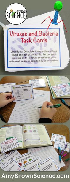 This is a set of 65 enrichment, reinforcement and review task cards for your lessons on viruses and bacteria. The cards cover cellular and noncellular structures, methods of reproduction and characteristics of viruses and bacteria.