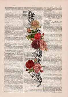 Arte decorativo de la espina dorsal de primavera flores en