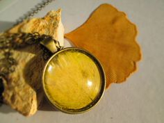 Ginkgo biloba necklace pressed flower jewelry by LisaDecorGifts