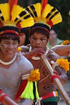 natives, brazil