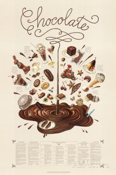 Chocolate Educational Food Poster Poster by Naomi Weissman at AllPosters.com
