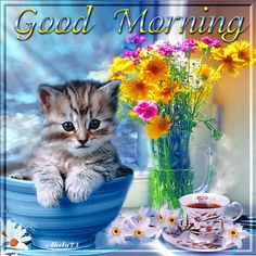 Good Morning cute friendship quote coffee kitten good morning good morning greeting morning gif